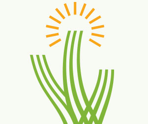 logo design tucson arizona az